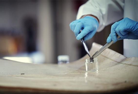 Membrane Autopsy